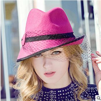 秋冬季新款帽子女士韩版英伦羊毛呢帽网纱蝴蝶结渔夫帽包邮