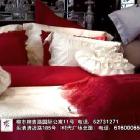 梦洁家纺广告片 (5播放)