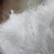 杰诚纺织 1/4羽毛纱 涤纶羽毛纱 花式纱特种纱批发