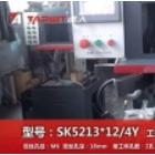 达人机床 立式多轴攻丝机SK5213x12-4Y 纺织配件攻丝演示 (4播放)