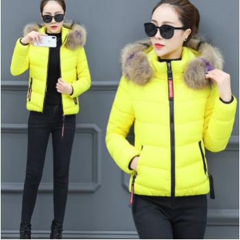 图荣短款棉衣女冬季韩版时尚大毛领棉服大码保暖棉袄外套一件代发