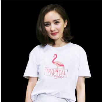 外贸2019夏女装大码宽松印花上衣纯棉短袖t恤女明星同款网红T恤