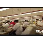 服装生产制衣车间流水线工人高清实拍视频素材缝纫工缝纫机 (599播放)