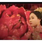 中式服装秀 (143播放)